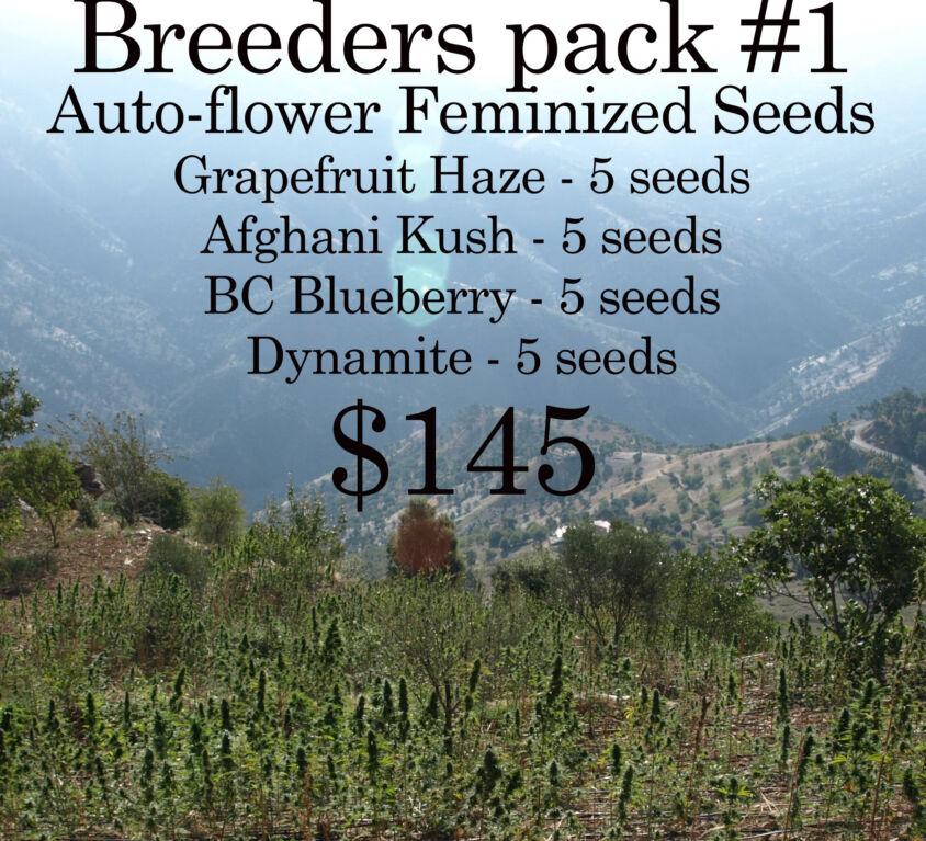 Auto-Flower Breeders Pack #1